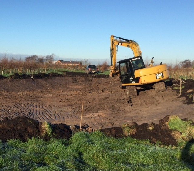 New Habitats Are Being Created In Three Owls Wood